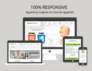 Interface 100% Responsive